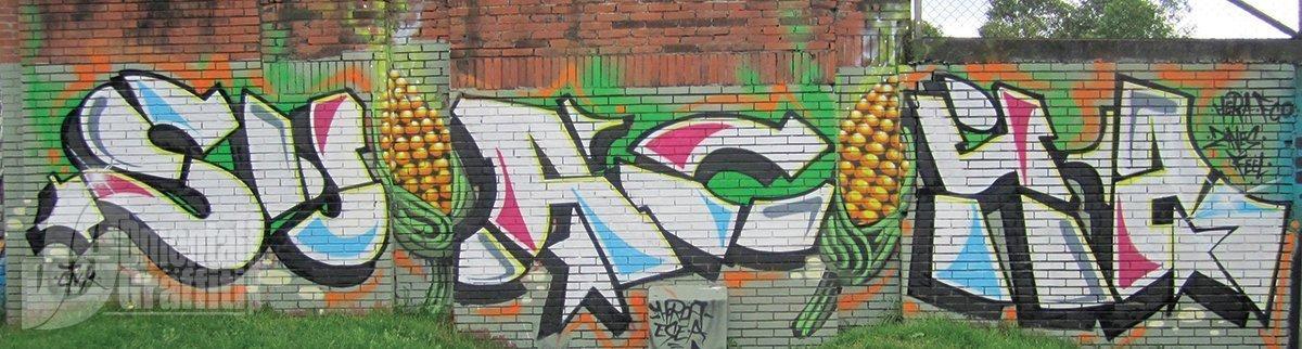 11-TCM-2010-BTA